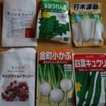 固定種の家庭菜園