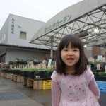 加賀野菜の苗を探せ