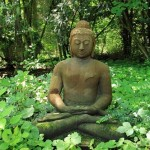 「アサナの意味」ヴィッパサナー瞑想2010京都2日目
