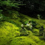 「もしかしてそれサマディ?」ヴィッパサナー瞑想2010京都4日目
