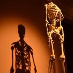 そのポーズ、一生できません!のヨガ解剖学